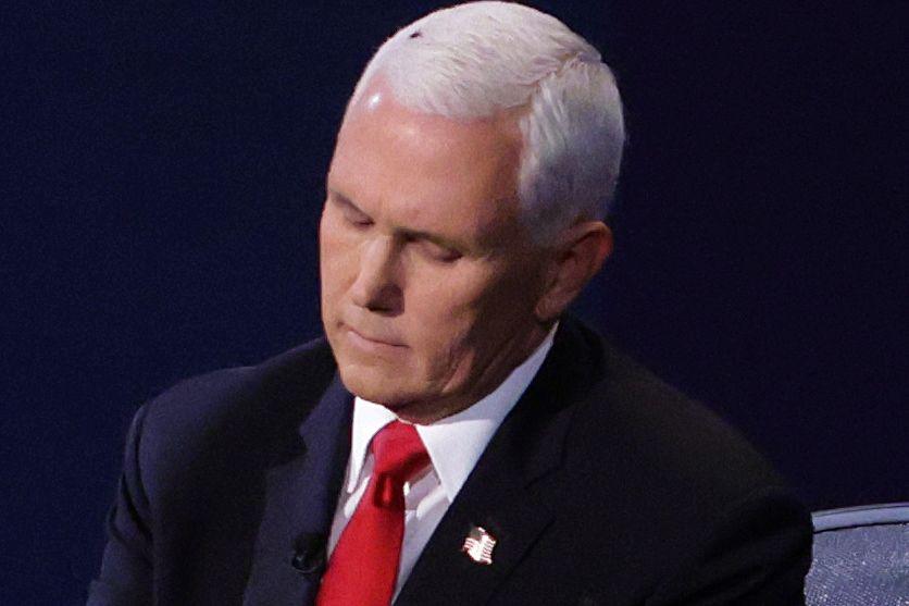 Vice presidential debate.. The fly that took over the debate.