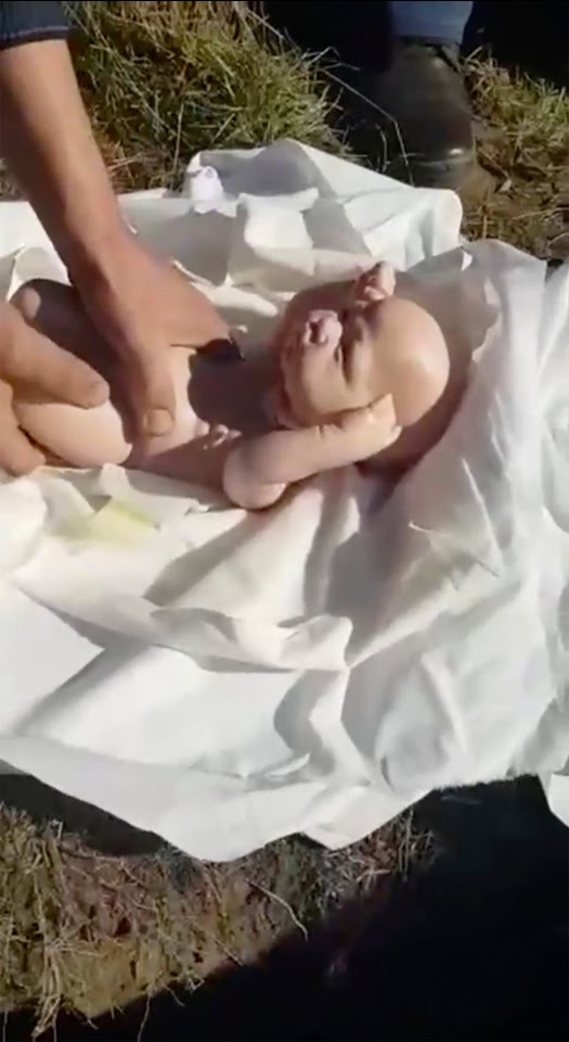 Russian 'father' discovers his 'dead newborn twins' are actually DOLLS