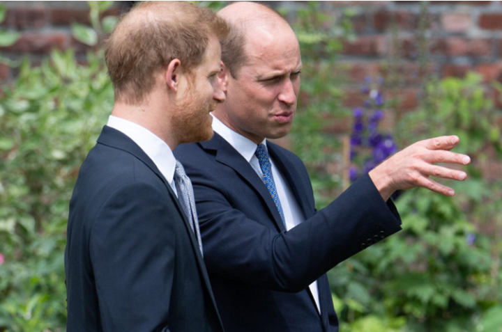 Prince William and Prince Harry have reunited